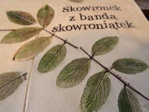 slowikowa (13)