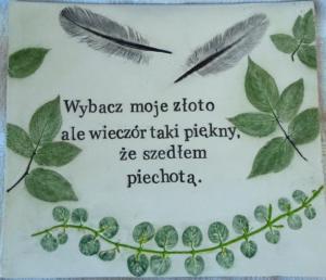 slowikowa (40)
